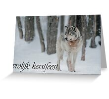 Timber Wolf Christmas Card Dutch 4 Greeting Card