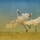 Snowy Egret Dance by Deborah  Benoit