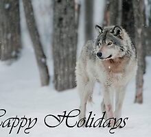 Timber Wolf Holiday Card 4 by WolvesOnly