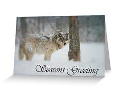 Timber Wolf Season Card 5 Greeting Card