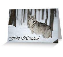 Timber Wolf Christmas Card Spanish 6 Greeting Card