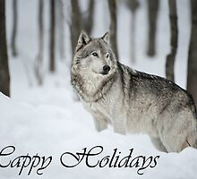 Timber Wolf Holiday Card 6 by WolvesOnly