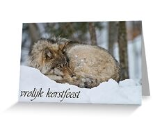 Timber Wolf Christmas Card Dutch 7 Greeting Card