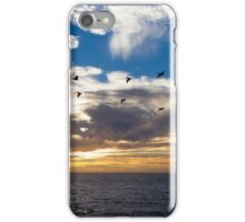 Pelican Patrol iPhone Case/Skin