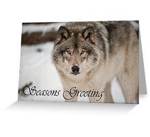 Timber Wolf Seasons Card 8 Greeting Card