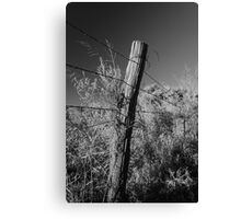Barbed Wire on Pole Canvas Print