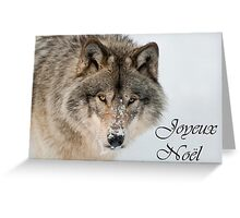 Timber Wolf Christmas Card French 9 Greeting Card