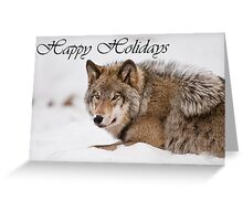 Timber Wolf Holiday Card 11 Greeting Card