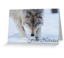 Timber Wolf Christmas Card Spanish 12 Greeting Card