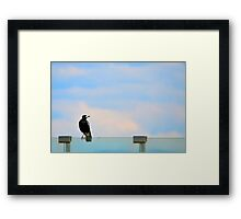 Magpie Sitting Framed Print