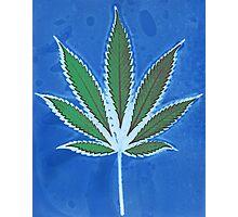 Hemp Lumen #8 Leaf Marijuana/Cannabis/Weed Photographic Print