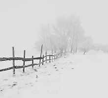 Beautiful Winter Scene by Lucie Rovná