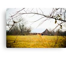 BACK OF THE FIELD Canvas Print