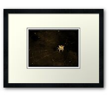 ©BPS Spider On The Wind II Sepia Framed Print