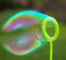 Perfect Bubble by Brianna da Silva