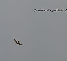 Beautiful hawk on a soft grey sky Sometimes it's good to be alone. by Neroli Wesley