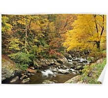 smoky mountain fall color on little river Poster