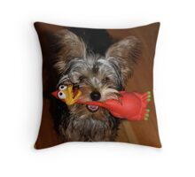 A Yorkie with Her Toy Throw Pillow