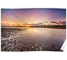 Dawn at Bushland Beach Poster