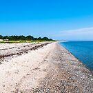 Aarhus Beach by Michael Brewer
