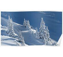 Frozen Winter Scene Poster