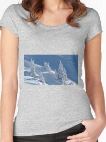 Frozen Winter Scene Women's Fitted Scoop T-Shirt