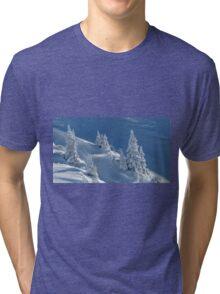 Frozen Winter Scene Tri-blend T-Shirt