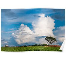 Clouds over a Cornfield Poster