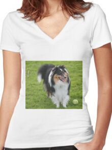Luca the Sheltie , come play with me. Women's Fitted V-Neck T-Shirt
