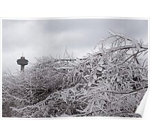 Niagara's Artistic Hand - Frozen Mist Sculpted on Tree Branches Poster