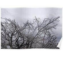 Niagara's Artistic Hand - Sparkling Frozen Tree  Poster