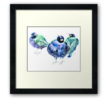 Funny exotic birds Framed Print