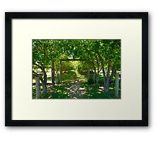 Valley Of Cool Shade Framed Print