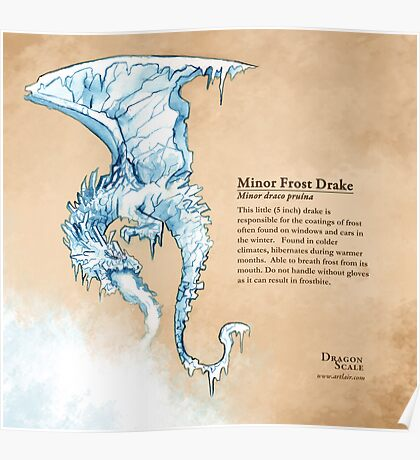 Dragon Scale: Frost Drake Poster