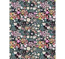 Pattern of multicolored flowers Photographic Print
