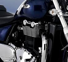 Triumph Thunderbird Easy Rider Sticker