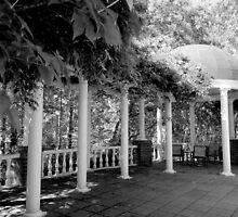Garden Patio - B&W    ^ by ctheworld