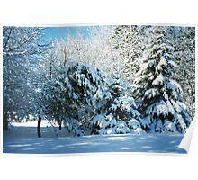 Winter Wonderland-Snow Poster