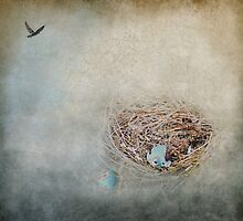 Empty Nest by Jai Johnson