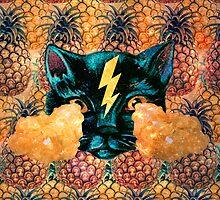 Pineapple Cat by Paula Morales