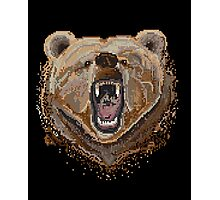 Pixel Bear Photographic Print