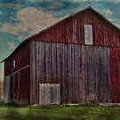 Another Red Barn along the Way by vigor