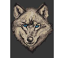 Pixel Wolf II Photographic Print