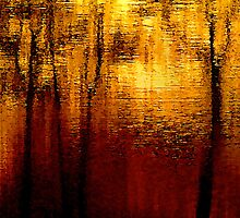 Reflected Trees In Layered Lake And Canal Waters .. by Mike  Waldron