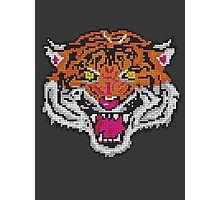 Pixel Tiger Photographic Print