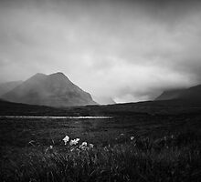 Glencoe  by Dorit Fuhg
