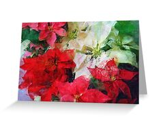 Mixed color Poinsettias 1 Sketchy Greeting Card