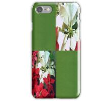 Mixed color Poinsettias 1 Blank Q5F0 iPhone Case/Skin