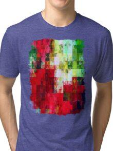Mixed color Poinsettias 1 Abstract Circles 2 Tri-blend T-Shirt