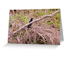 A Bird in the Brush Artistic Photograph by Shannon Sears Greeting Card
